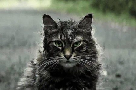"Movie Review: ""Pet Sematary"""